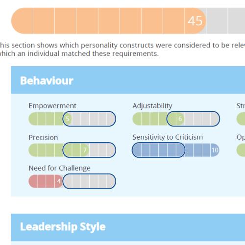 Role Profile Summary